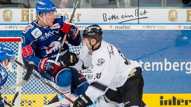 Ice Tigers Empfangen Adler Zum Spitzenspiel Del