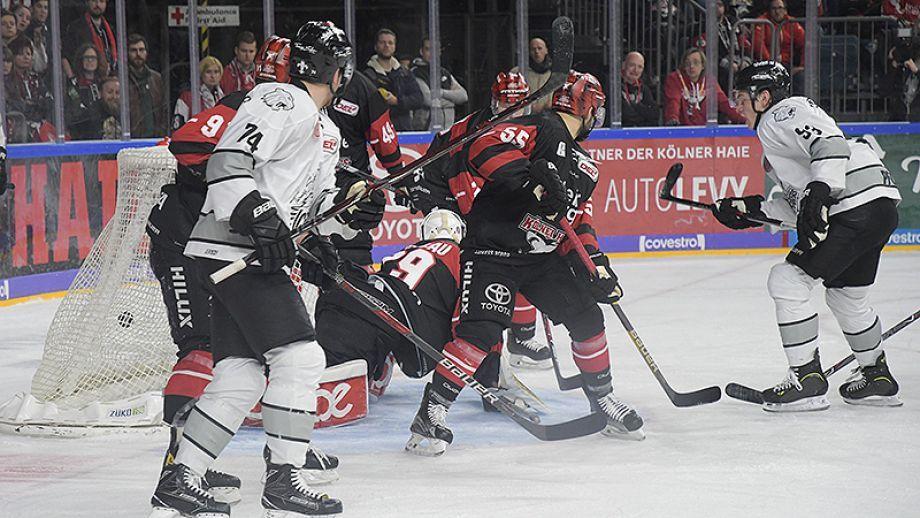 Ice Nürnberg Köln