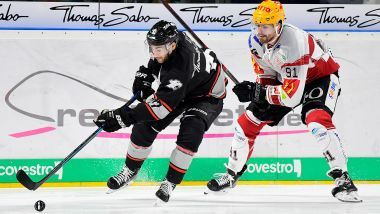 Ice Tigers empfangen Pinguins