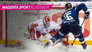 Fischtown Pinguins - ERC Ingolstadt - Magazin