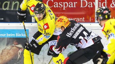 Gamereport: Pinguins Bremerhaven - Krefeld Pinguine