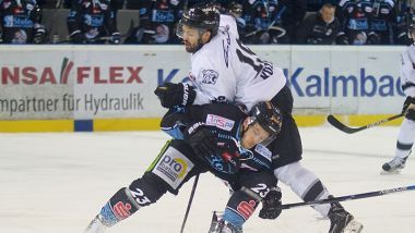 Game Report: Straubing Tigers - Thomas Sabo Ice Tigers