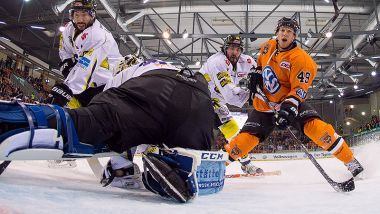 Game Report: Grizzlys Wolfsburg - Krefeld Pinguine