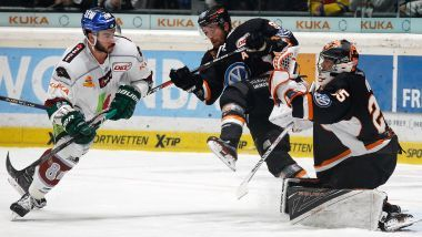 Gamereport: Augsburger Panther - Grizzlys Wolfsburg