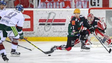 Pinguins Bremerhaven - Augsburger Panther