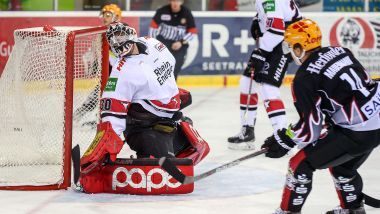 Game Report: Pinguins Bremerhaven - Kölner Haie