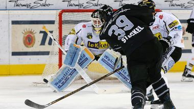 Game Report: Thomas Sabo Ice Tigers - Krefeld Pinguine