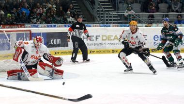 Gamereport: Augsburger Panther - Pinguins Bremerhaven