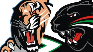 Game Report: Straubing Tigers - Augsburger Panther
