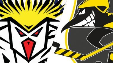 Game Report: Pinguins Bremerhaven - Krefeld Pinguine