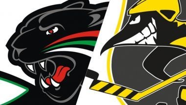 Gamereport: Augsburger Panther - Krefeld Pinguine
